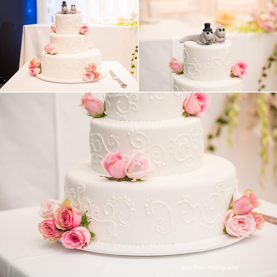 Cakes V2  2
